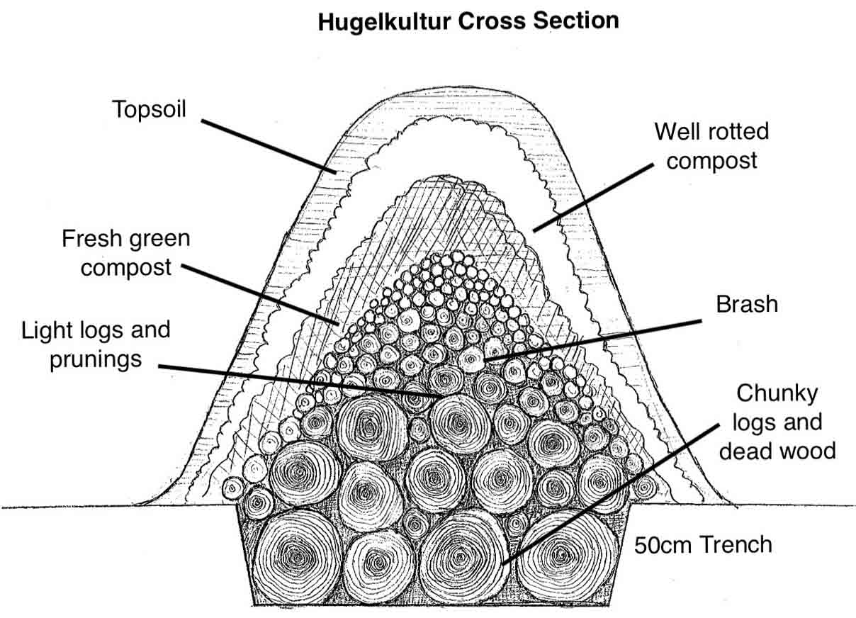 This is a cross section of a hugelkultur